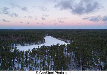 Aerial ascent flight over winter pine forest in dark evening after sunset
