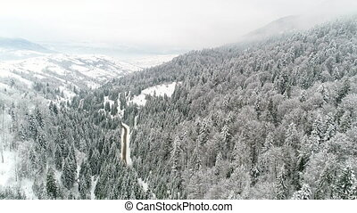 AERIAL: Car driving along the forest road in winter - Winter...