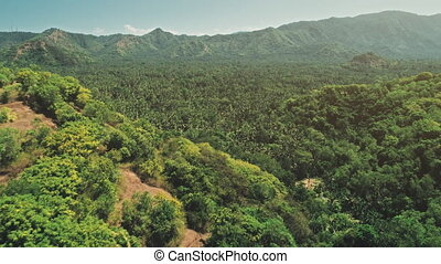 Aerial Drone Flight over Green Rain Forest Jungles