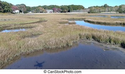 Aerial Drone - Fly Low Over Marsh Passing Over Grass And...