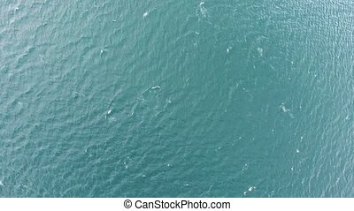 Aerial drone footage of the sea forming waves - Aerial drone...