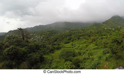Aerial drone of foggy lush green forest - Aerial drone...