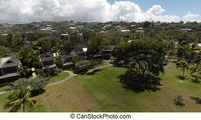 Aerial drone of lush green trees at a resort