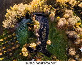 Drone Photography of a Pond Behind the House Surrounded with Beautiful Autumn Colors