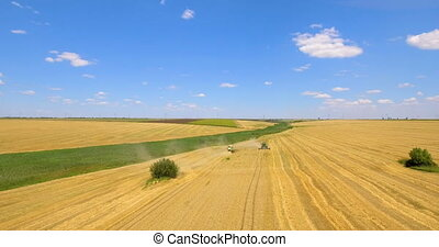 Aerial drone shot of a combine harvester working in a wheat...
