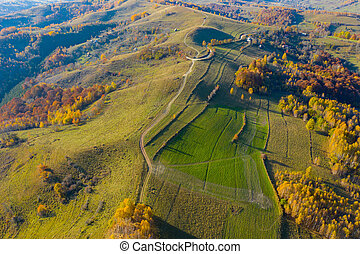 Aerial drone shot of autumn landscape