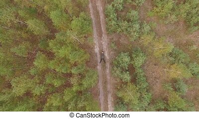 Aerial drone shot over the autumn coniferous deciduous...