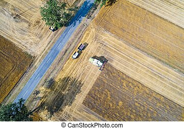 Aerial drone view of harvester combine working on field.