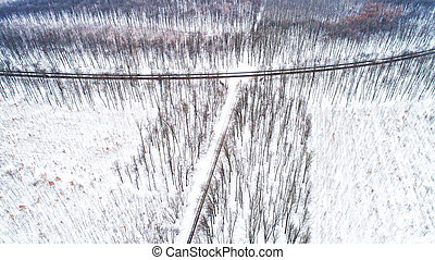 Aerial drone view of road in idyllic winter landscape