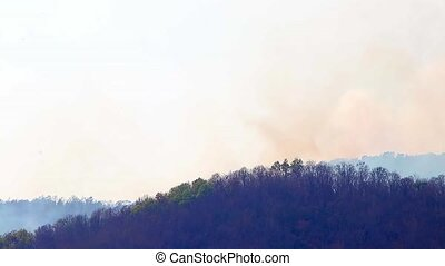 Aerial firefighting with wildfire during drought in mountain...