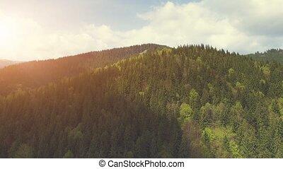 Aerial Flight in Carpathian mountains - Aerial Drone Footage...