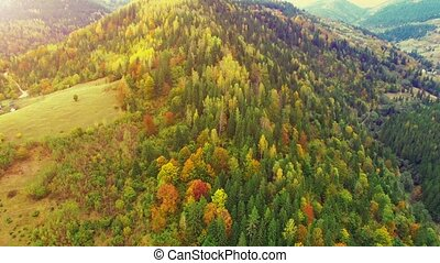 Aerial Flight in Carpathian mountains. 30fps