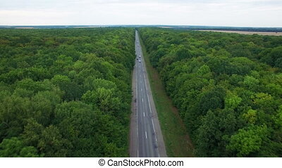 Aerial: flight over road in wood.