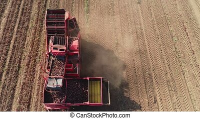 harvesting sugar beets - aerial footage farm equipment...
