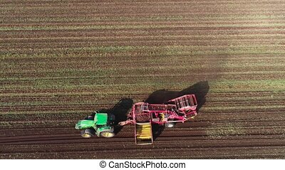 harvesting sugar beets - aerial footage farm equipment...