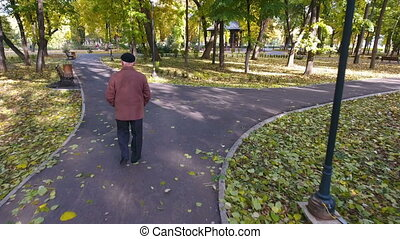 Aerial footage of elderly man walking in the park in autumn