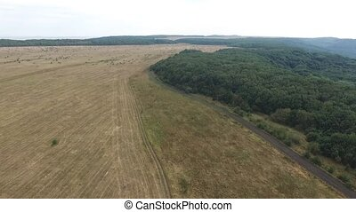 Aerial footage of grass landscape worked by farmer mowed and...