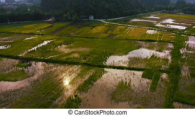 Aerial footage of Ninh Binh and Tam Coc rice fields during Sunset - Vietnam
