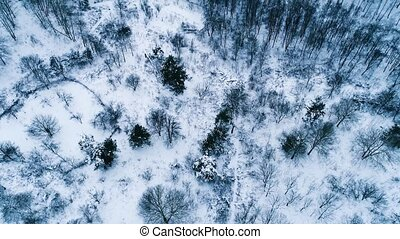 Aerial footage of place for skiing near forest. View from...