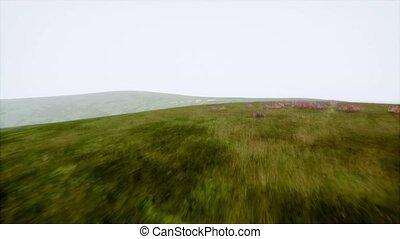 Aerial Green Hills Landscape in Fog - aerial hills green...