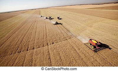 Aerial Harvest Landscape
