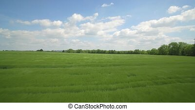 Aerial, High Speed Flight Above High Gras And Farmland,...