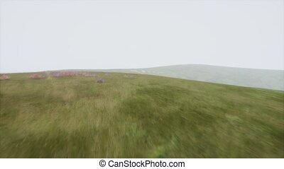 Aerial Hills Green Scenic Landscape in Fog