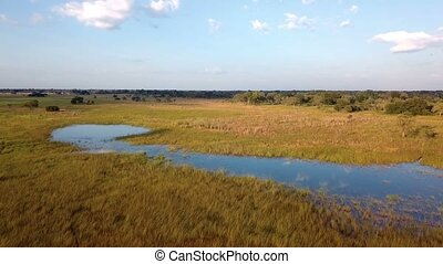 Aerial landscape, Mamili swamp in northen Namibia - Aerial...