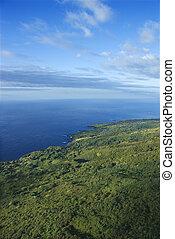 Aerial Maui landscape.