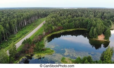 Aerial motion above blue pond near the country road and birds flock flies over pond, Russia, Drone shot