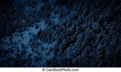 Aerial Moving Above Winter Forest