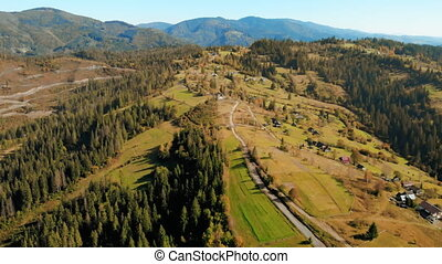 aerial moving forward over forest - drone flight over pine...