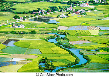 Aerial of a village with rice field and a river running through