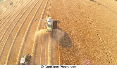 Aerial of harvesting a grainfield wirth a combine harvester