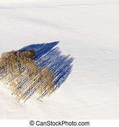 Aerial of snowy landscape in Colorado.