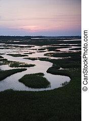 Aerial of wetland.
