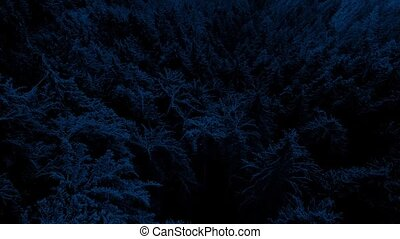 Aerial Over Forest Valley At Night - Flying over a steep...