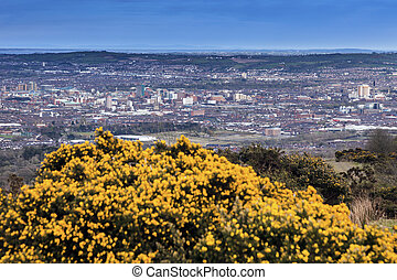 Aerial panorama of Belfast