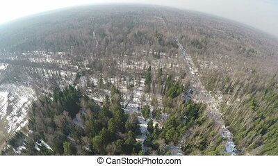 Aerial panorama of winter mixed forest