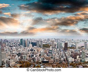 Aerial panoramic view of Tokyo at dusk