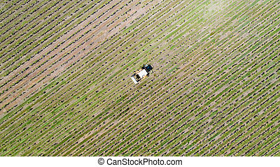 Aerial photo of a tractor harvesting grapes in a vineyard