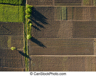 aerial photo of agro, summer view of green land with fields ...
