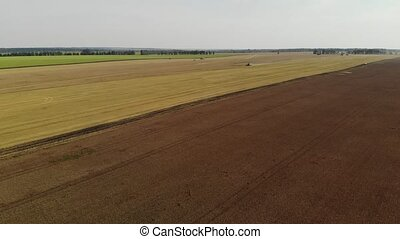 aerial photography of ripe wheat fields during harvest