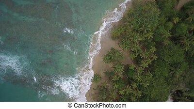 Aerial, Punta Uva At Cahuita, Costa Rica - Native Material,...