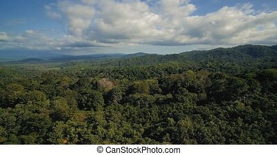 Aerial, Reserva Forestal Golfo Dulce, Costa Rica - Graded...
