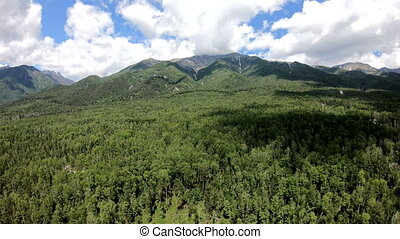 Aerial shot. Flight to the mountains. Drone flies forward over the forest