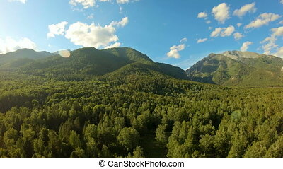 Aerial shot in the mountains. Drone rise up above the forest...