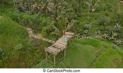 Aerial shot of a beautiful young woman in a blue dress that visits famous Tegalalang Rice Terraces in Ubud village on the Bali island