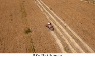 Aerial shot of a boundless golden field with an old buddy on a combine harvester