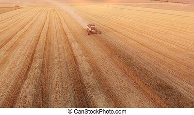 Aerial shot of a combine harvester reaping crops on a golden...